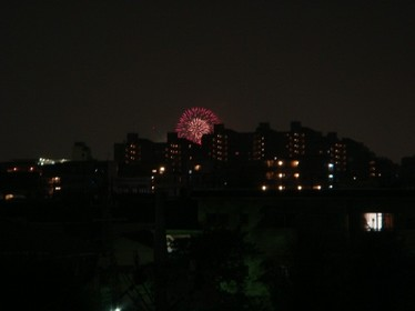 090822fireworks.JPG