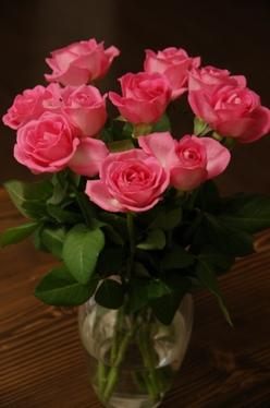110316_roses.jpg