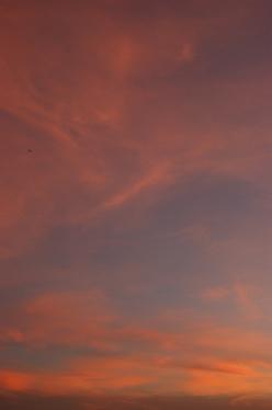 20100829_sky2.jpg