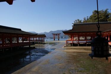 20110221_itsukushima.jpg