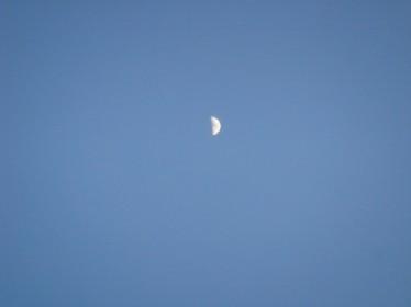 moon080610.JPG